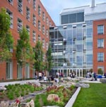 University of Rhode Island Outdoor Rain Garden. Architect: Payette. Photo credit: Warren Jagger Photography